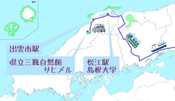 11月学会&調査.png
